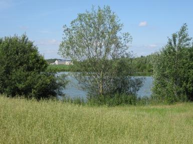 vue étang